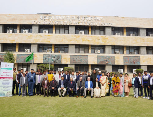 International Workshop on DUS testing of Wheat and Barley in India
