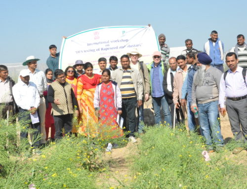 International Workshop on DUS testing of Rapeseed and Mustard in India